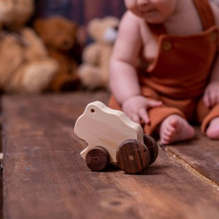 Natural Wooden Frog Car