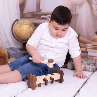 Wooden Plug and Play Toy - From Walnut Tree